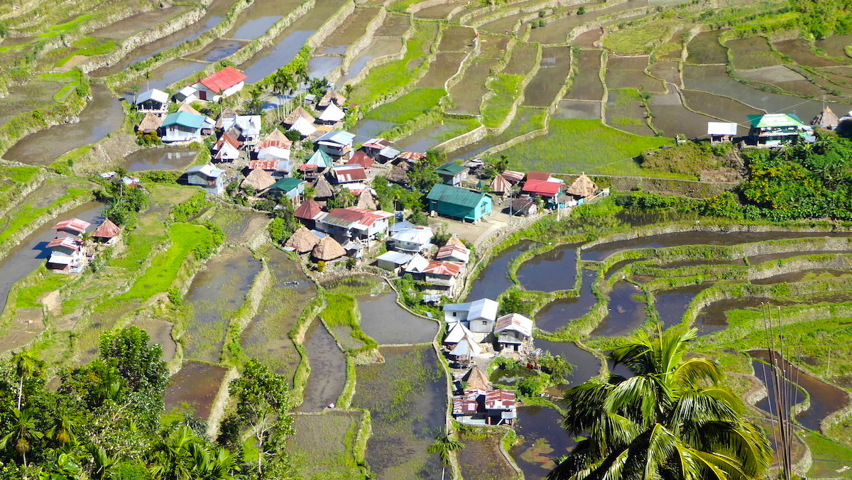 19 Monate auf Weltreise: Die Reisterrassen von Banaue auf den Philippinen
